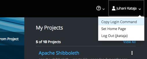 Command line tool usage - Rahti container cloud